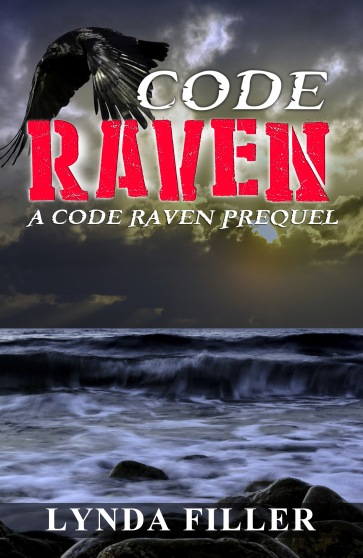 CODE RAVEN-2